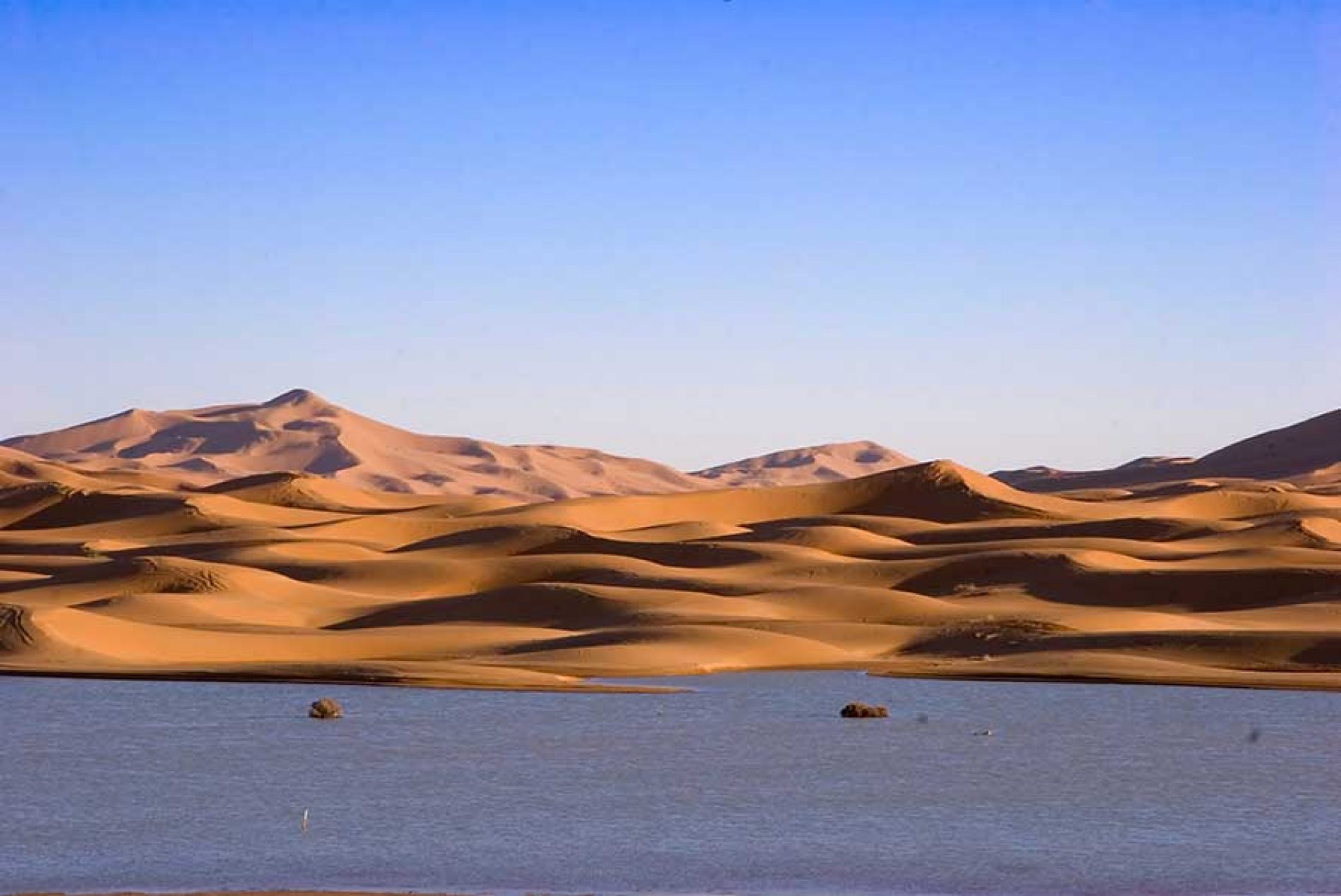 Dal Sahel all'Oceano