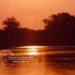 Amazzonia brasiliana
