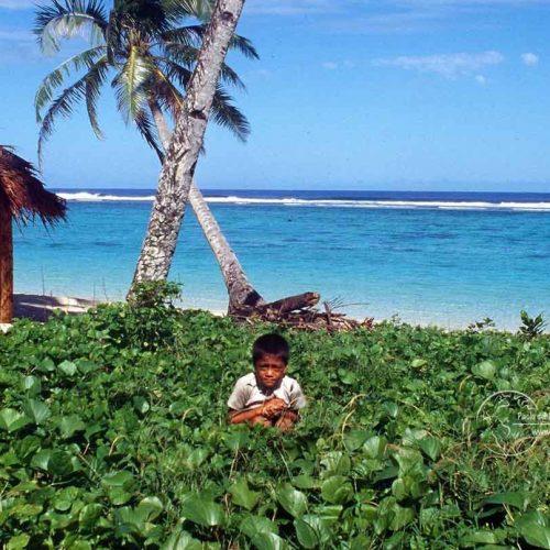 Samoa e Tonga