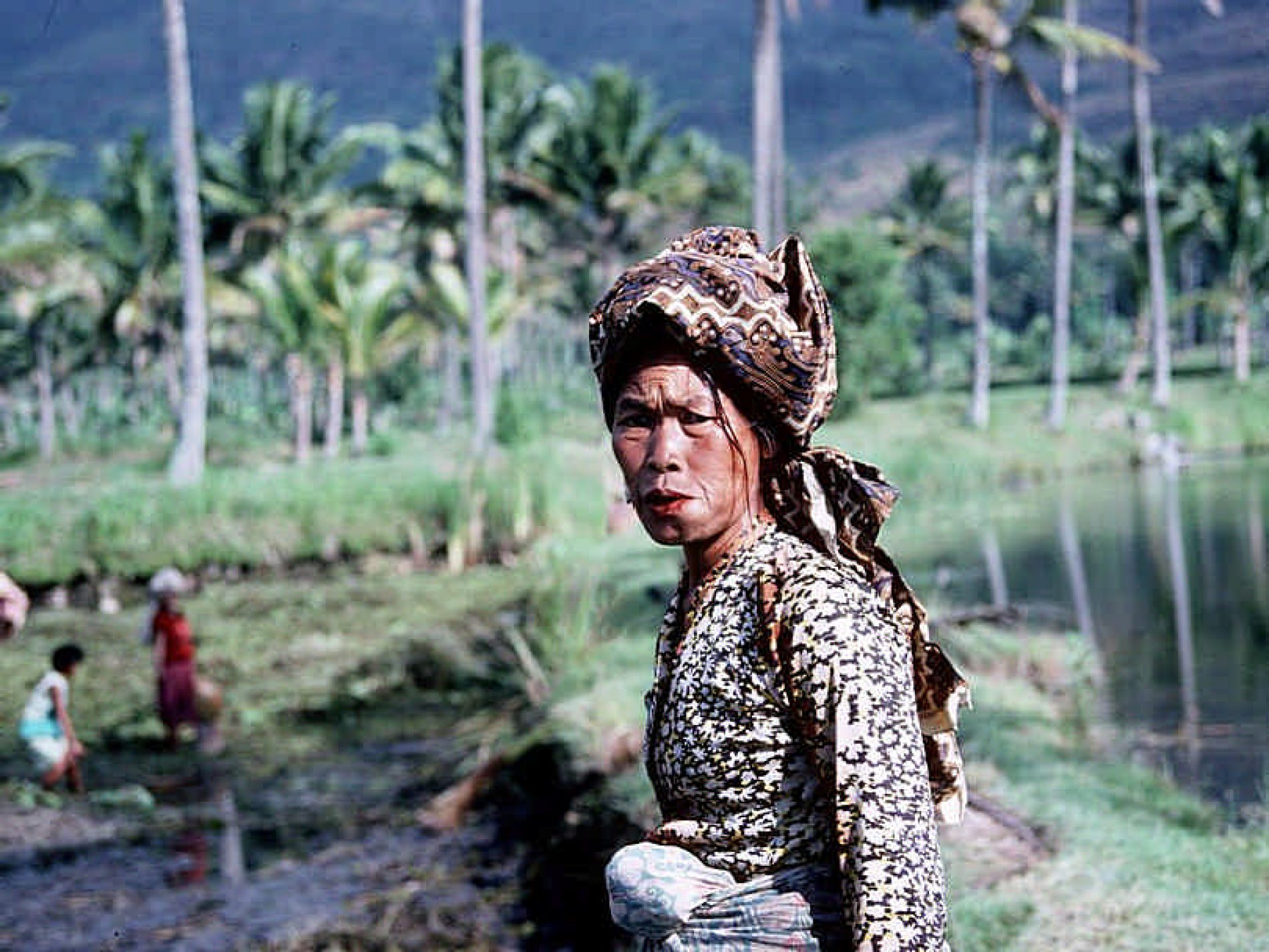 Da Giava a Bali
