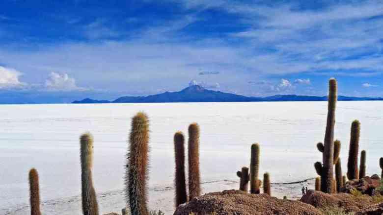 Bolivia Ande deserto
