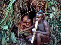 Congo Pigmei campo