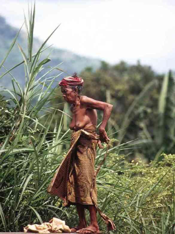 sulawesi indonesia asia orientale 4