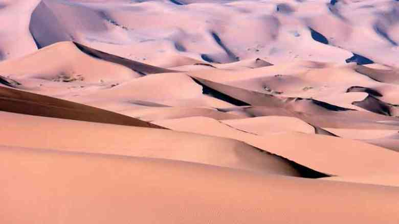 Photo of Sahara: via dei carri