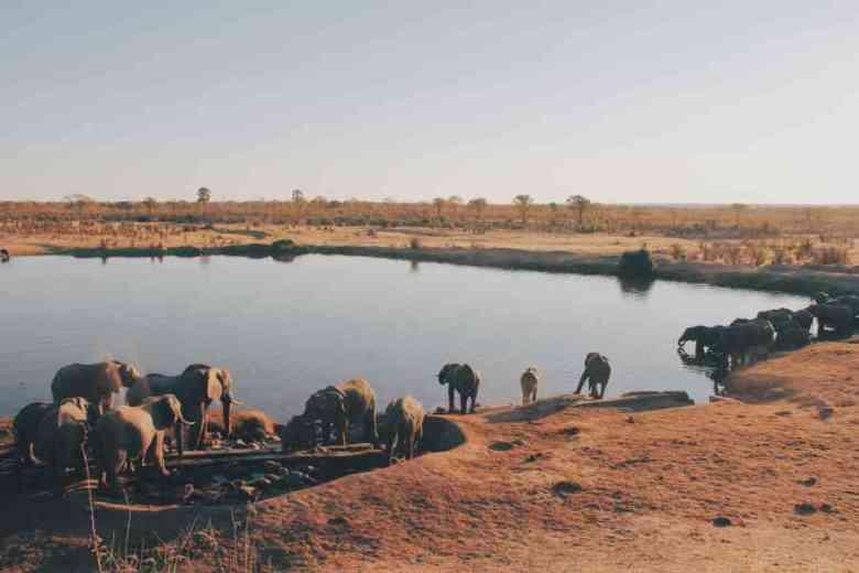 zimbabwe-vazanze-viaggi