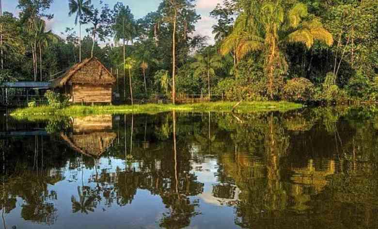 riflessi sul fiume amazzonico