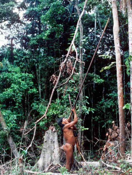 gli indios dell'amazzonia