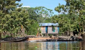 Amazzonia vill