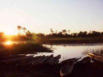Botswana Okavango