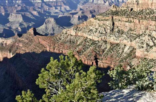 10Usa Az Gran Canyon (40)