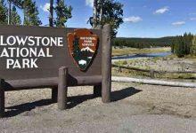 Usa Wy Yellowstone