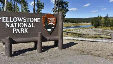 Usa Wy Yellowstone