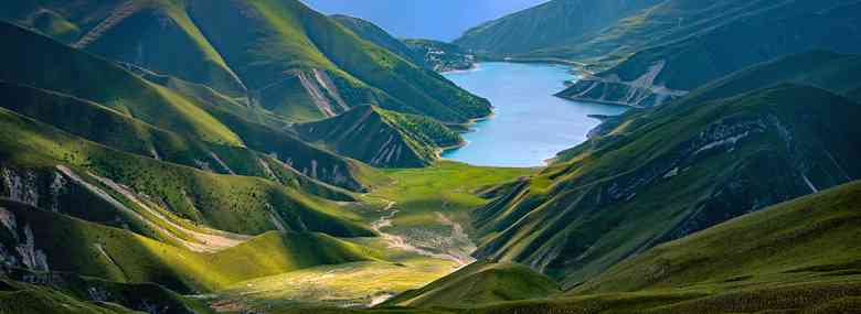 Photo of Cecenia