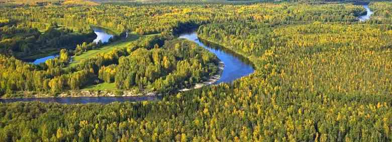Siberia fiume foreste